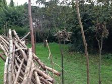 Giardino d'autunno: il bosco