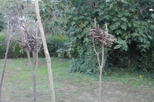 Giardino d'autunno: il bosco,